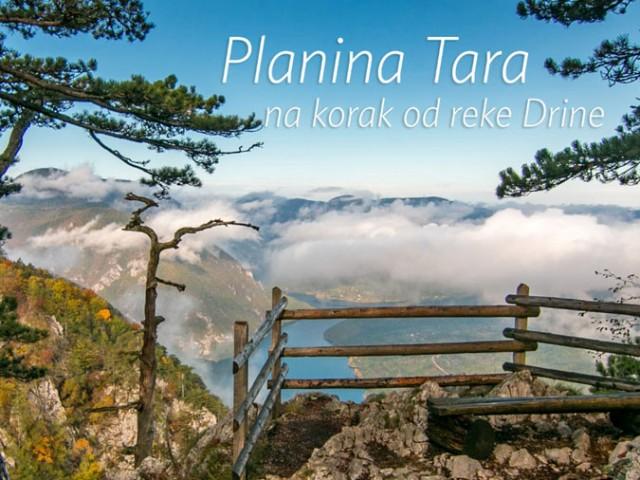 Tara, na korak od reke Drine
